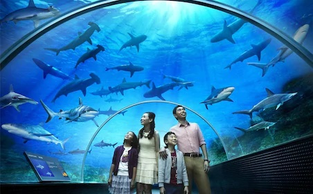 Full Day Langkawi City Tour with Underwater World